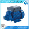 Cp Electric Pump para Machinery Manufacturing com Castiron/Brass/AISI304ss Support