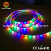 Rgbwyp 12V LED variopinto Ribbon/Strip per stanza Decoration