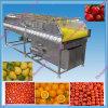Fournisseur de la Chine de machine de nettoyeur de rondelle de fruit de grande capacité