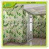 Het geschikt om gedrukt te worden Document van Eco Ston, het Geschikt om gedrukt te worden Document van de Muur