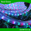 4-Wire Flat Multi Rygb LED Rope Light