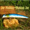 Attrait en plastique dur de pêche