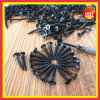 PhillpsのビューグルHead Black Fine Thread Drywall Screw