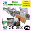 Machine de production de feuille de mousse de croûte de PVC