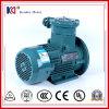 De Vuurvaste Elektrische Motor van het Gietijzer met Hoge Efficiency