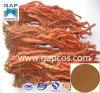 100% natürliches Salvia Miltiorrhiza Auszug-Puder