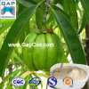 50% Hydroxycitric 산성 Garcinia Cambogia 추출