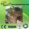 Cerca ou trilhos compostos de madeira baratos com CE