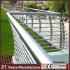 316L Park Stainless Steel Greensward Balustrade (DMS-B2284)