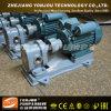 Yonjou 회전하는 장치 펌프