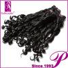 Remyの卸し売り毛、加工されていないVirgnのインドの毛のよこ糸(PE-INSP--19)