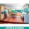 Шкафы трасучки самонаводят мебель кухонного шкафа кухни конструкции (AIS-K199)