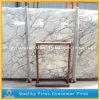 Marmo bianco Polished per i controsoffitti, decorazione dell'Italia Arabescato parete/del pavimento