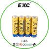Горячий пакет AAA/AA Shrink батареи сухой батареи Lr03 сбываний