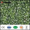 옥외 벽 산울타리 인공적인 녹색 담