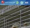 Het Voeden van Autoamtic Systeem voor Batterijkooi in Afrikaans Landbouwbedrijf (a-3L120)