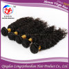 Человеческие волосы волос выдвижения новой европейской девственницы Remy курчавые (HKCE-A220)