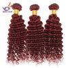 安いバージンのブラジル99j町カラー毛の束、100%の人間の毛髪は深い巻き毛のバージンの人間の毛髪を束ねる