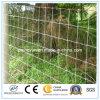 Maglia della rete fissa del campo del bestiame per gli animali
