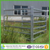 Panneaux en acier bon marché de bétail pour le marché de l'Australie