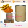 Polvo de la curcumina del extracto el 95% de la raíz de cúrcuma