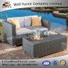 Vimine buono di Furnir Wf-17015 insieme esterno del sofà delle 2 parti