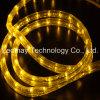 Tira de néon do cabo flexível do diodo emissor de luz de 2 fios da luz do aquário