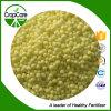 Granuliertes wasserlösliches Düngemittel-Kalziumammoniumnitrat (CAN)