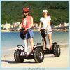 信頼できる2つは電動機のスクーターを動かした