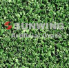 Sunwing Artificial Sports Grass pour le terrain de football