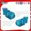 Swimmingpool-elektrische Wasser-Pumpe