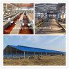 Construcción de viviendas portable ligera de las aves de corral de la estructura de acero