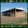 販売(L-S-0050)のための軽い鉄骨構造の格納庫