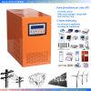 2000W 12VDC Pure Sine Wave Power Inverter met Charger