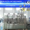 Máquina de rellenar automática del agua de botella del animal doméstico (CCGF18-18-6)