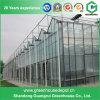 Estufa de vidro agricultural comercial da venda quente com sistema de irrigação