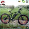 bicicleta eléctrica del freno de disco de la bici de la playa del poder más elevado 500W con la vespa del precio bajo