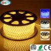 Le soluzioni di disegno SMD3528 impermeabilizzano la striscia del LED in Cina