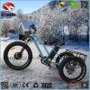 알루미늄 합금 500W 뚱뚱한 타이어 3 바퀴 전기 자전거