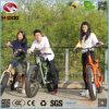 Vacanza elettrica di giro di guida della squadra della bicicletta della spiaggia della bici grassa della gomma per il motorino al minuto del contratto d'affitto