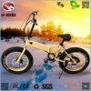 脂肪質のタイヤが付いている電気スクーターを折る250W Foldable Eバイク