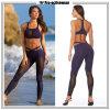 Pantaloni correnti delle donne degli abiti sportivi all'ingrosso di compressione