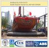 Lieferung startender GummiRolls der Bescheinigungs-ISO9001