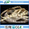 bande flexible actuelle continuelle de l'éclairage LED 5050 de 60LEDs/M