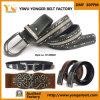 Studs Rhinestone PU Belts de vente de mode de Madame chaude pour des femmes
