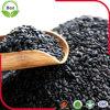 Qualitäts-schwarze Sesam-Startwerte für Zufallsgenerator