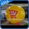 Anunciando Inflatable Balloon com o Logo para Promotion