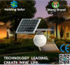 Luz solar ahorro de energía del panel LED del monocristal para el jardín