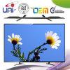 2015 Uni Hoge Resolutie Volledige '' e-GELEIDE TV HD 39