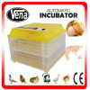 Egg automatique Incubator Temperature Controller Emu Egg Incubator Thermostat Hatching Eggs à vendre